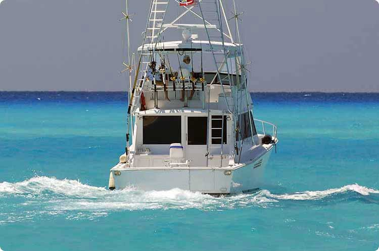 Bimini Boat Photo